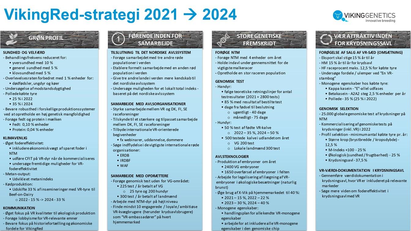 Vikingred Strategi Kort 2021 2024 Dansk
